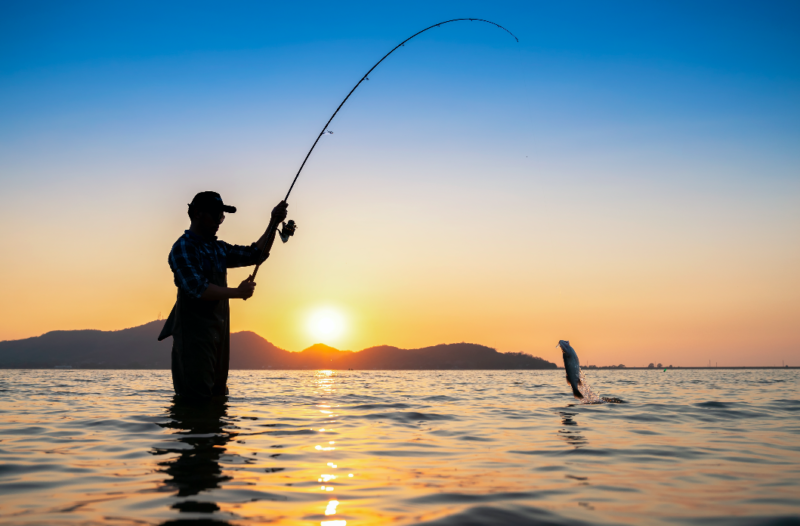 Podiatric Consultant Fishing  to Catch a New Podiatrist in Need