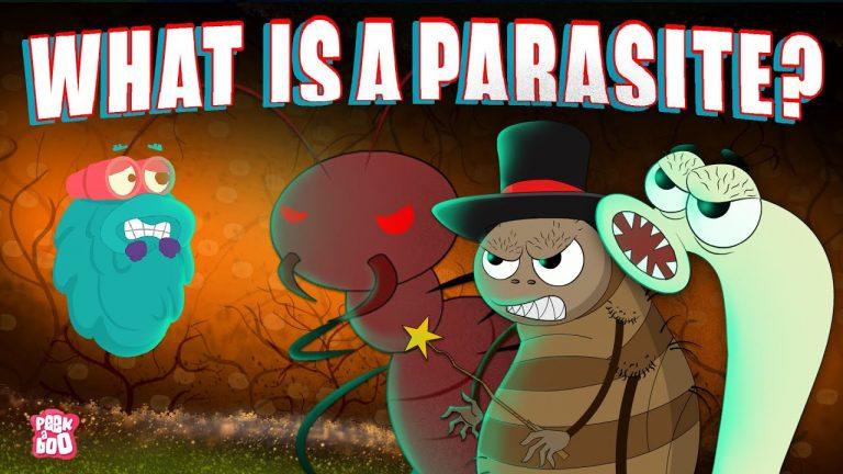 Parasites and Podiatry